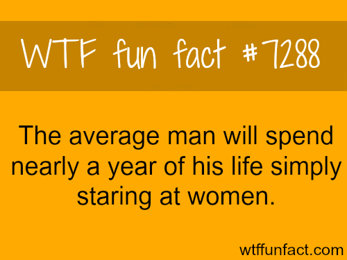 Men spend a year of their lives starting at women - WTF fun fact   Wtf fun  facts, Fun facts, Funny facts