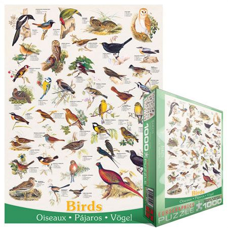 Bird Watching 1000 piece puzzle by Eurographics - $13.50