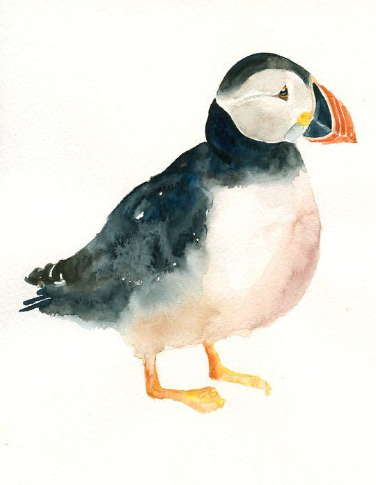 PUFFIN by DIMDI Original watercolor painting 8x10inch(Vertical orientation). $25.00, via Etsy.
