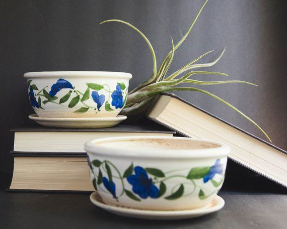 Shallow Plant Pot With Saucer Planter Pot With Saucer And Drainage Holes 6 Inch Planters 6 Inch Hand Painted Planter Small House Plants Saucer