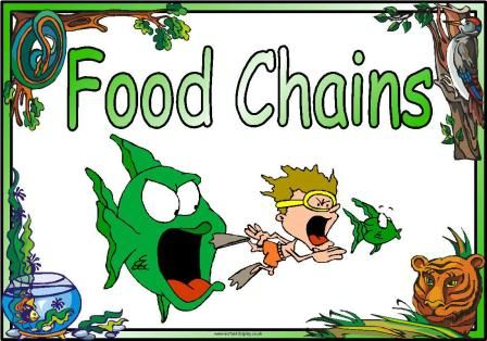 Food Chain Clip Art