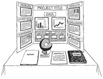 Image result for middle school science fair project rubric Science