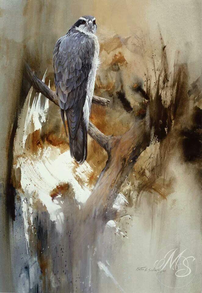 """""""Deceptive Calm"""" 21 x 14 (Goshawk) Watercolor by Morten E Solberg Sr."""