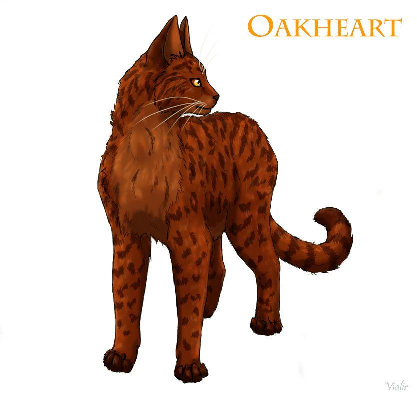 Výsledek obrázku pro warriors cats oakheart