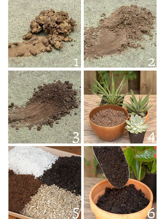 Know these garden basics and you 39 ll have the best garden for Garden soil or potting soil