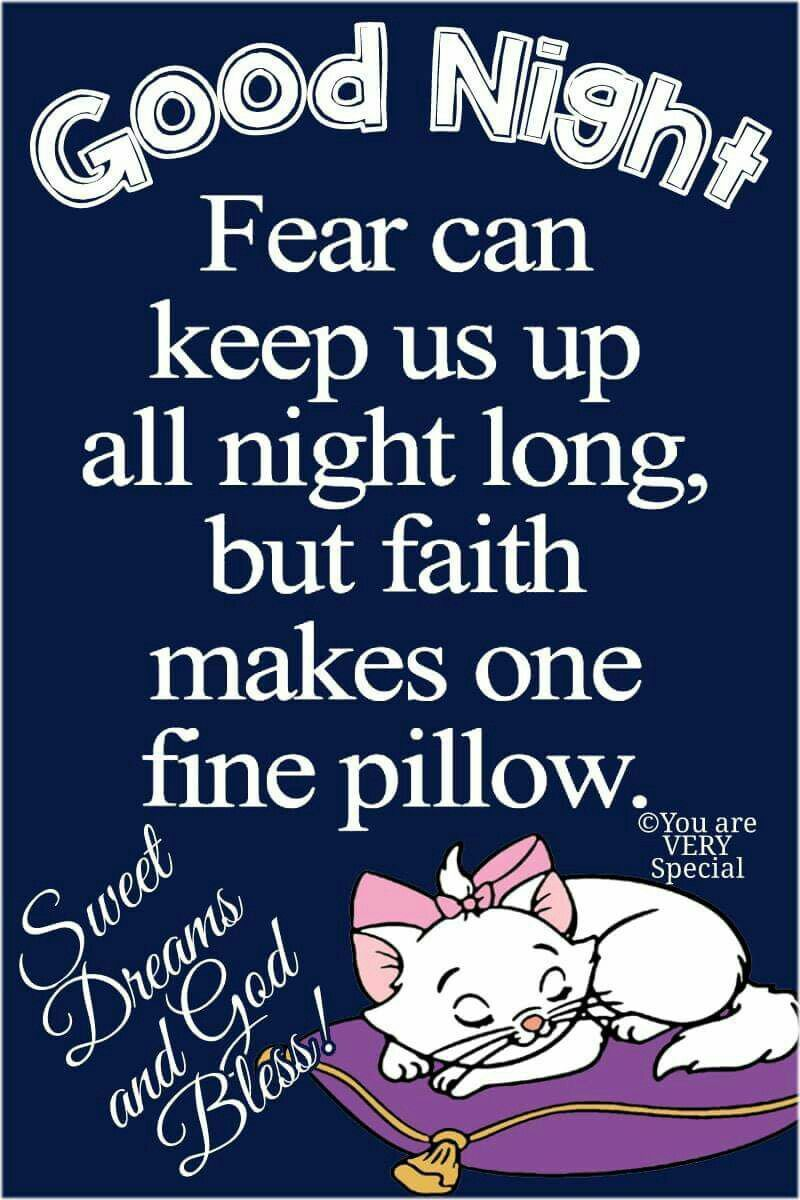 Pin By Wendy Costa On Quotes And Sayings Good Night Funny Good Night Quotes Good Night Family