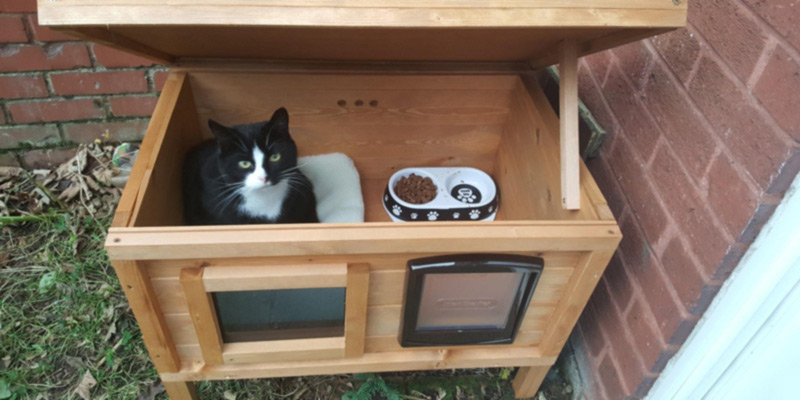 Best Cat Houses for Indoor and Outdoor Use in the UK (With