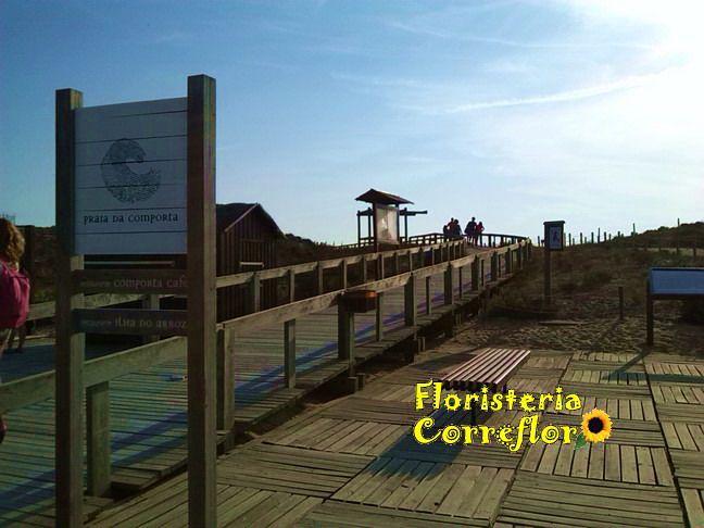 Playa Comporta. Portugal. Floristería Correflor. 91 695 62 71