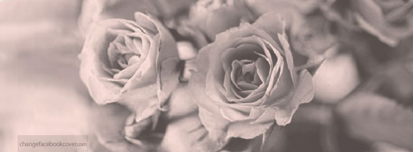 Facebook Cover Vintage Roses Photo Background Flowers Black