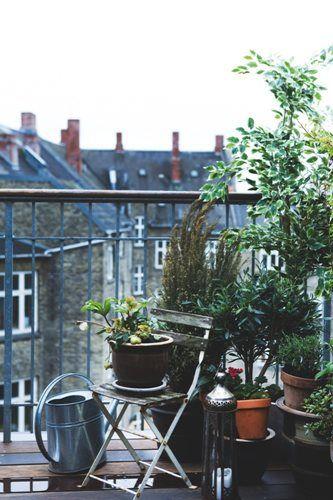 Balcon Potager Balcon Planete Deco Deco