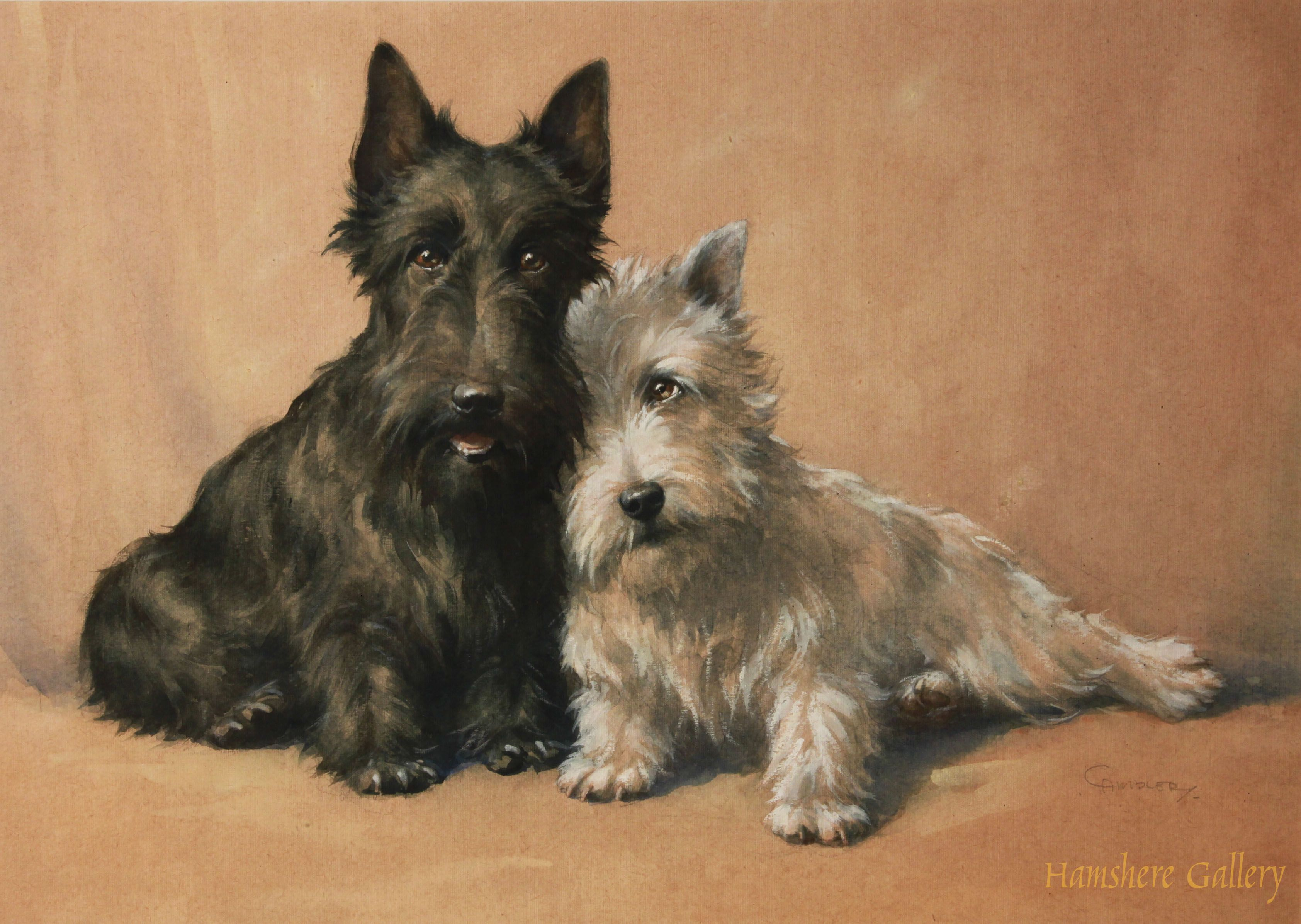 Watercolour on paper of a seated black and white Scottish Terrier by Christopher Gifford Ambler (English, 1886-1965).SOLD