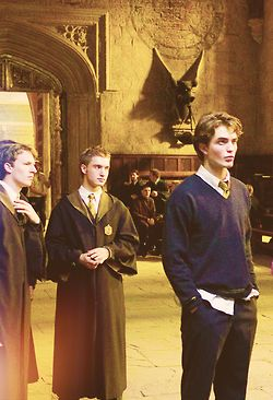 Cedric Harry Potter Pictures Cedric Diggory Harry Potter Wall
