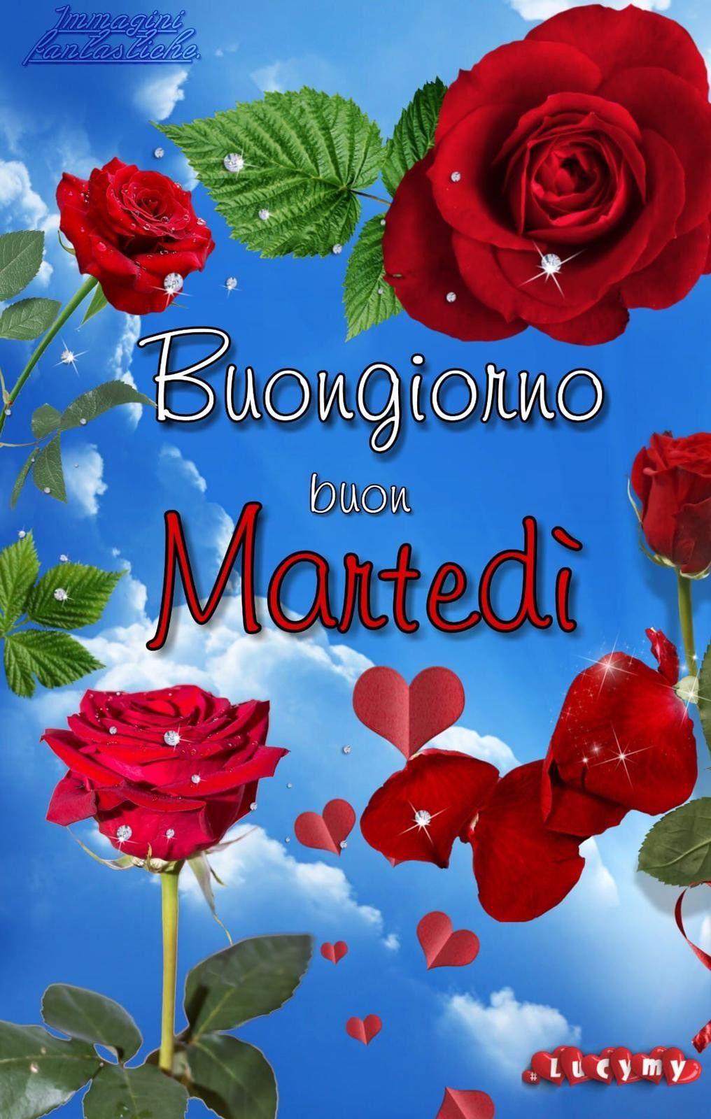 Pin di Nathalie Agushi su Italy bongorno Buongiorno