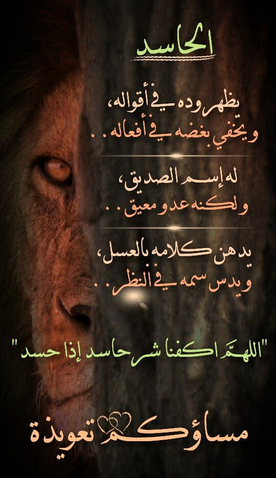 Pin By Ranya Anis On صباحيات و مسائيات Arabic Poetry Good Evening Good Afternoon