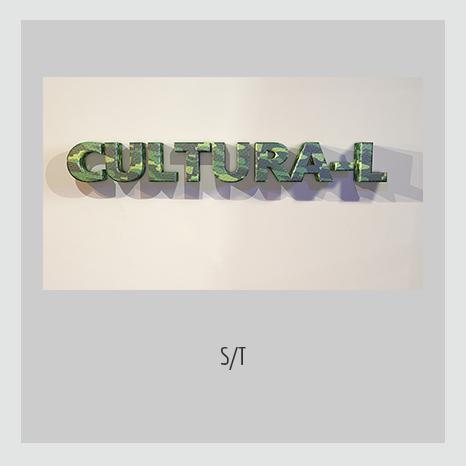 S/T -Cultura-L. YENY CASANUEVA Y ALEJANDRO GONZÁLEZ. PROYECTO PROCESUAL ART.
