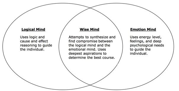 My Critique On The Minds In Dialectical Behavior Therapy