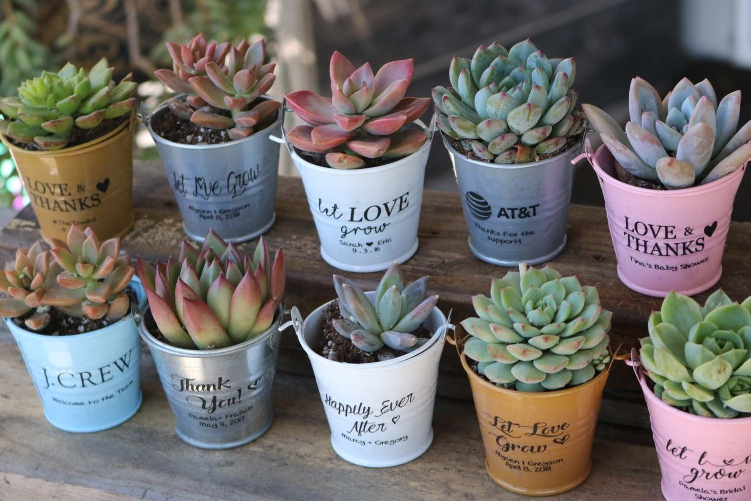 Custom Pail Stickers 18 Pack In 2020 Succulent Wedding Favors Wedding Gift Favors Succulent Party Favors