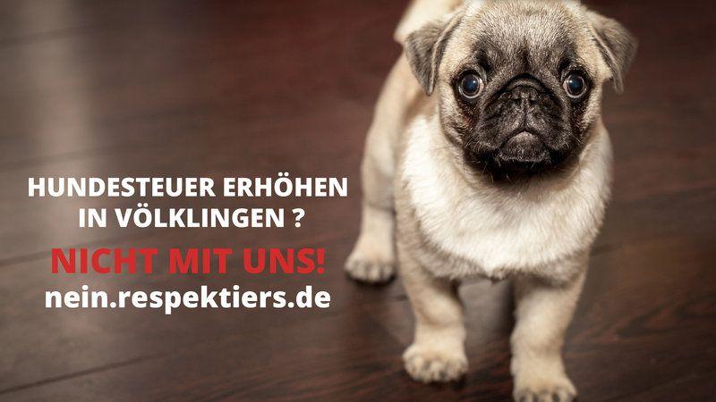 Petition · Klaus Lorig: NO DOGS tax increase in VÖLKLINGEN TO 01.01.2016 · Change.org