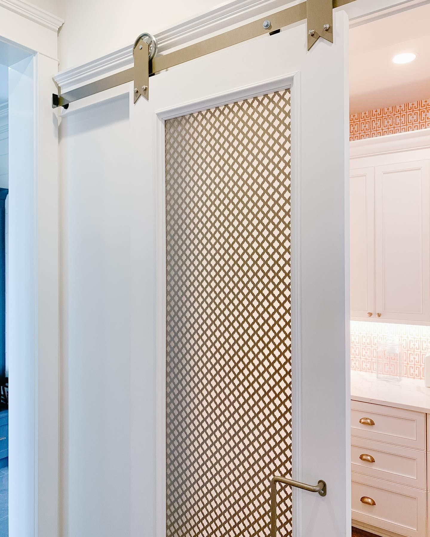 Kitchen Ideas: Pantry door inspo in 2020 | Barn doors ...
