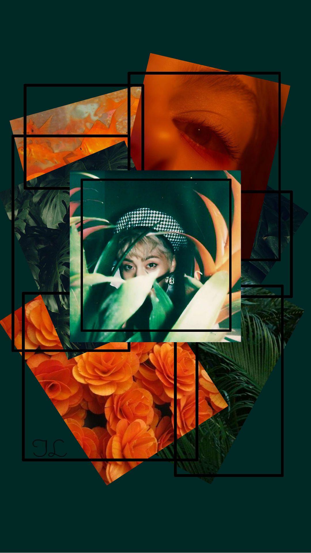 Pin by Катя on Exo Wallpaper, Green, Exo