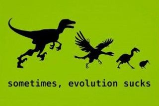 You Think Evolution Is Awesome #dinosaurillustration