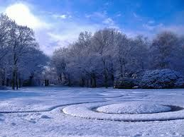 winter nature images - Google Search  does anyone else just love the snow covered trees