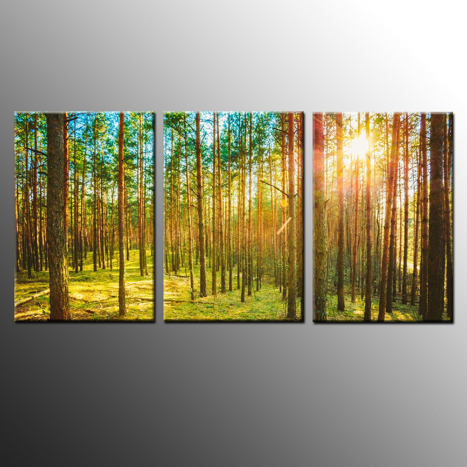 HD Canvas Print Art Light in Forest Wall Art Canvas Painting Print ...