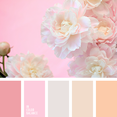 Beige Brown And Pink Cream Gentle Colors For A Wedding Palette
