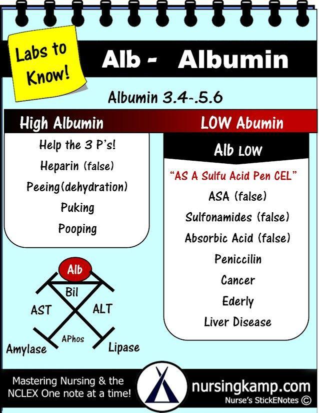 Nursing Kamp Albumin Lab Value Study Pinterest Nursing Lab
