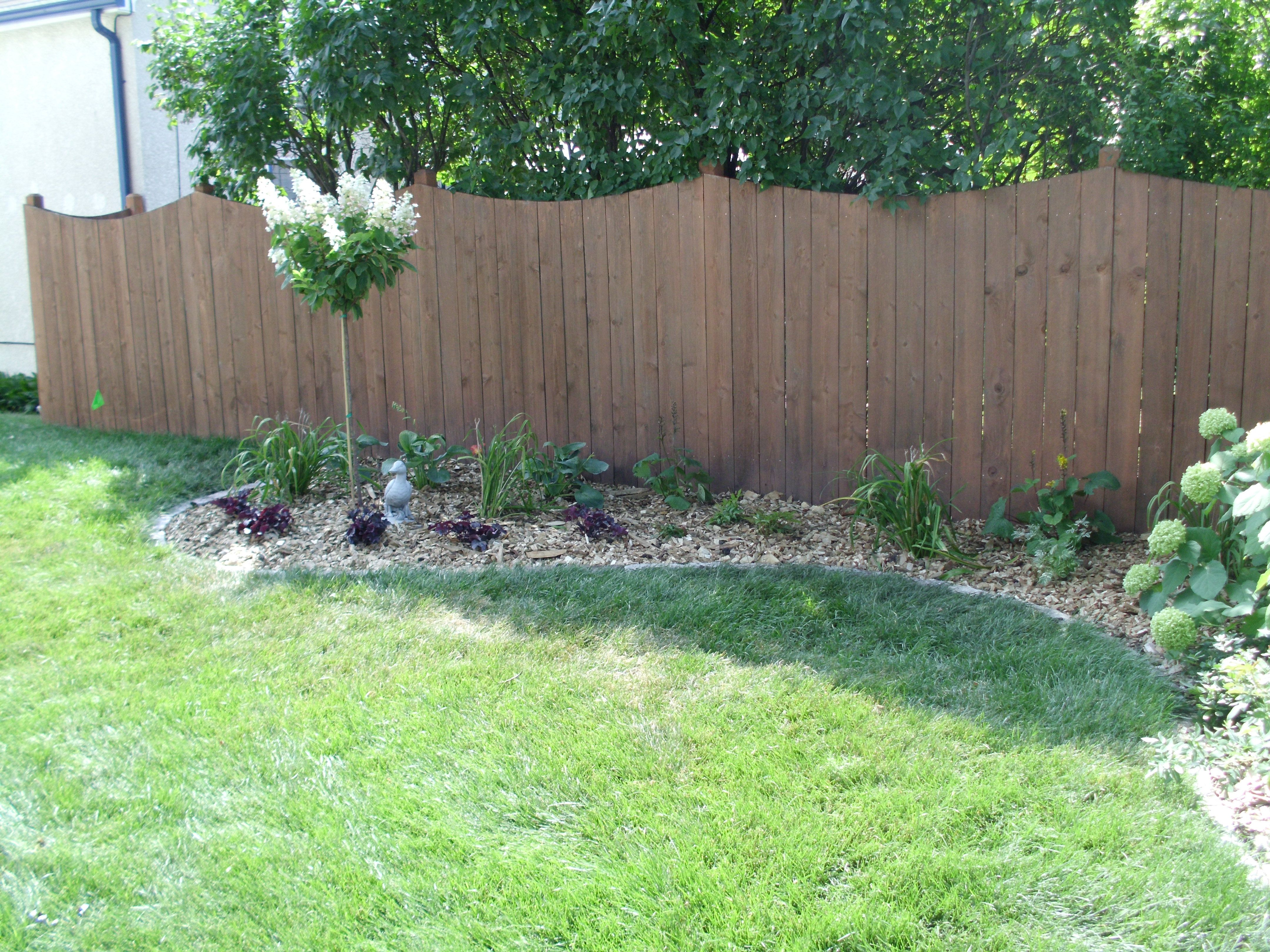 Backyard Landscape And Edging By Barrett Lawn Care 640 x 480