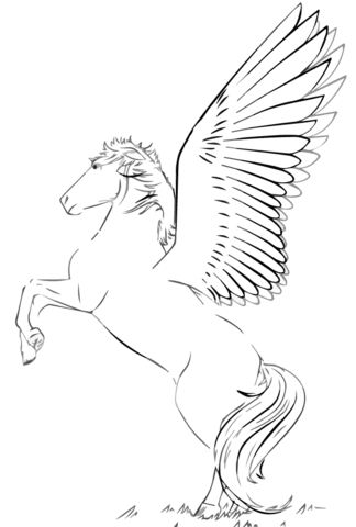 Rearing Pegasus Coloring Page From Pegasus Category Select From 20946 Printable Crafts Of Cartoons Natur Malvorlagen Pferde Malvorlagen Tiere Malvorlage Eule