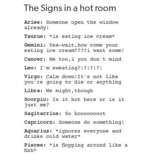 Zodiac Signs - In A Hot Room | Sagittarius | Zodiac signs, Zodiac