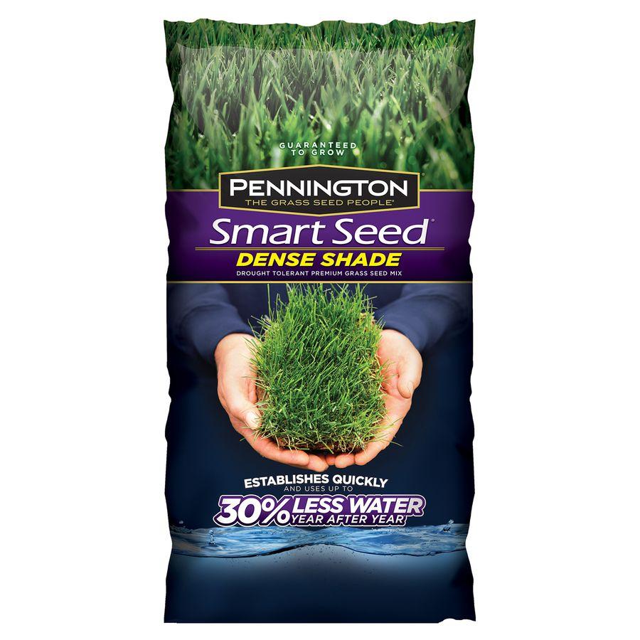 Pennington Smart Seed 3 Lb Dense Shade Seed Shade Grass Grass