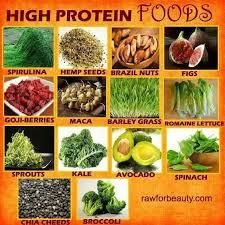 High Protein Diet Vegan Recipes On Board Vegan High Protein Vegan High Protein Vegan Recipes High Protein Vegetarian Recipes