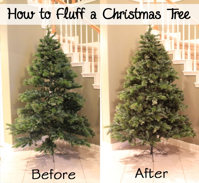 Proper Way To Decorate A Christmas Tree: How To Fluff An Artificial Christmas Tree Into The Correct