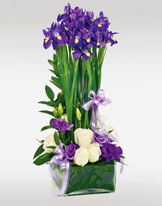 Singapore flowers flower vase purple irises mothers day netflorist is singapores largest sameday gift flower delivery service order gift ideas easter flowers online today negle Images