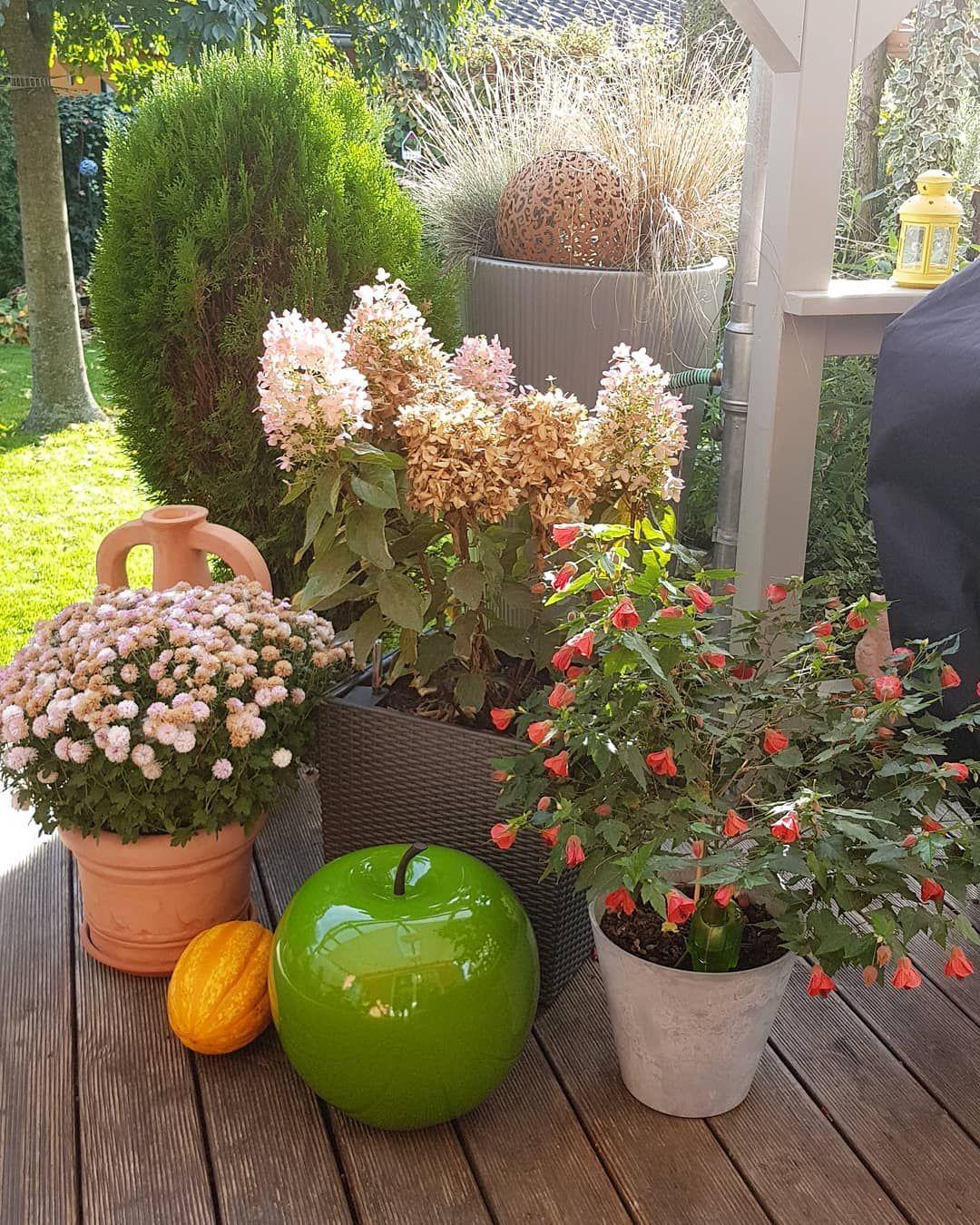 Herbstterasse Herbstgarten Terassengestaltung Gartenliebe Autumdecor Gartenlust Gartendesign Grunerapfel Kurbiszeit Chels Garten Design Herbstgarten Garten