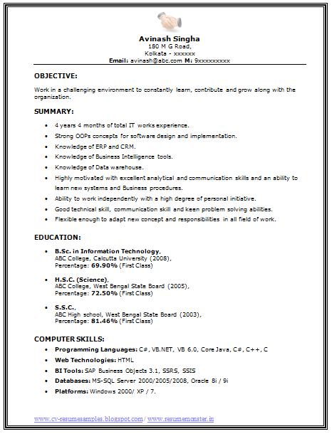 Bsc It Resume Sample Job Resume Examples Job Resume Format Job Resume Template