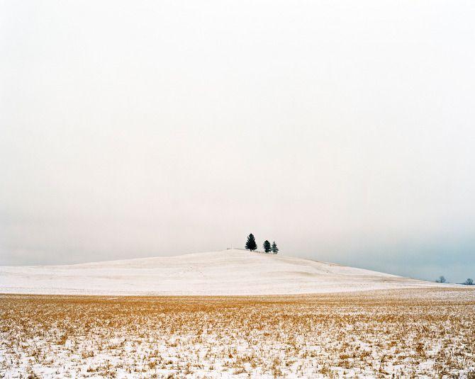 Landscape - Samantha Contis
