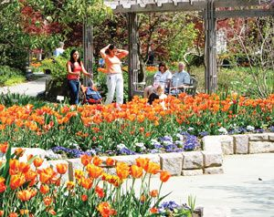 Brookside Gardens And Wheaton Regional Park