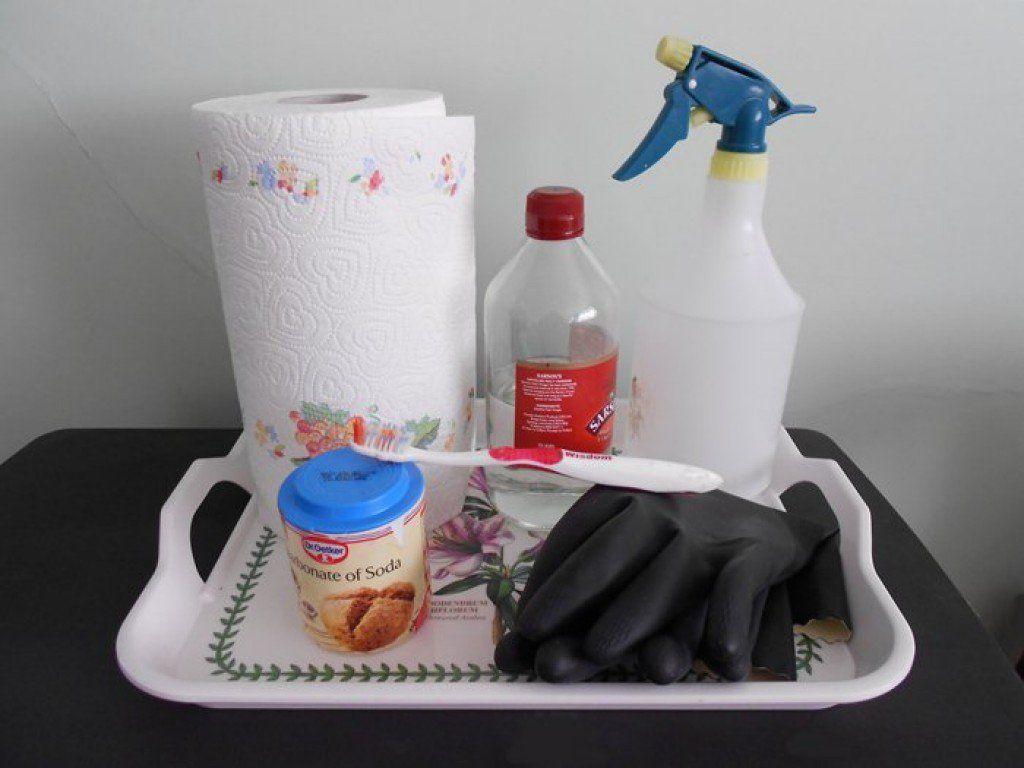 Pet Carpet Cleaner Spray