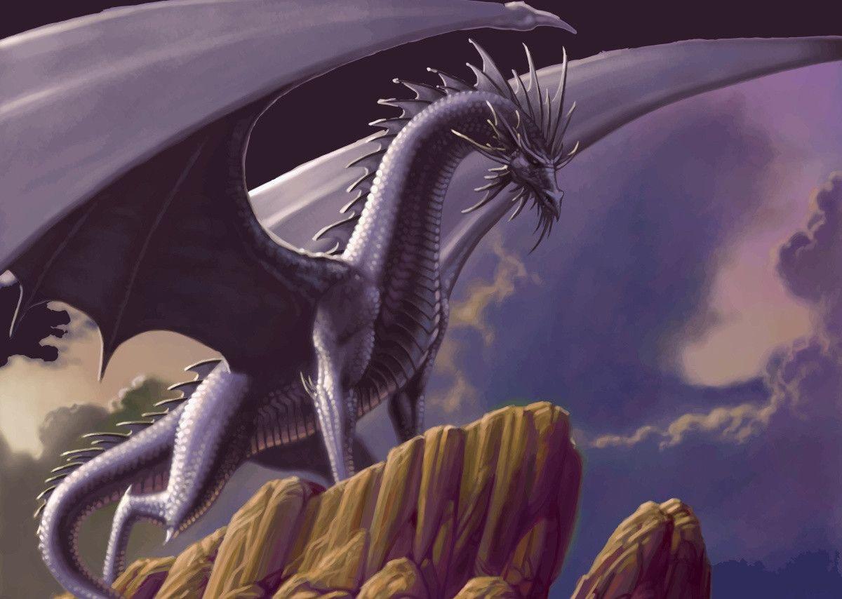 Beauty Purple Dragon Metal Poster Print Moises Izaguirre Oquendo Displate Fantasy Dragon Cool Artwork Animal Posters