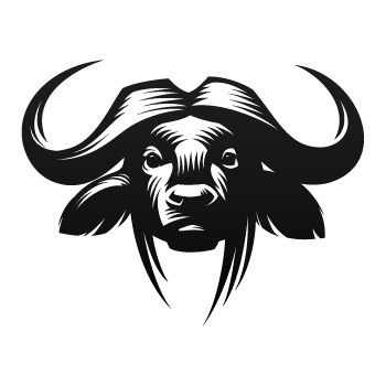 cape buffalo drawing | art | Pinterest | Búfalo, Buey y Trofeos