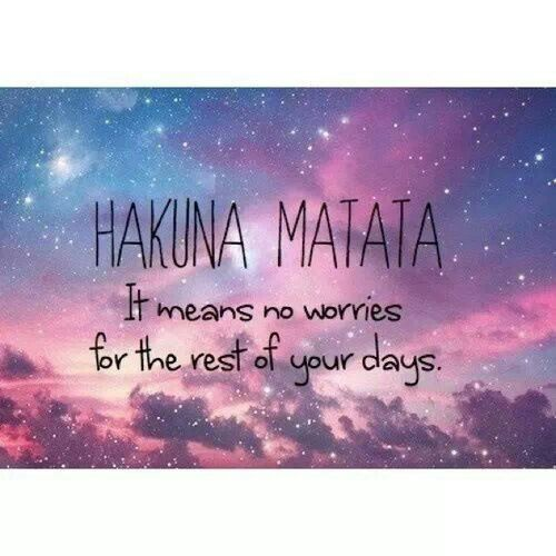 Hakuna Matata significa no preocuparse ~ Pared o ventana calcomanía