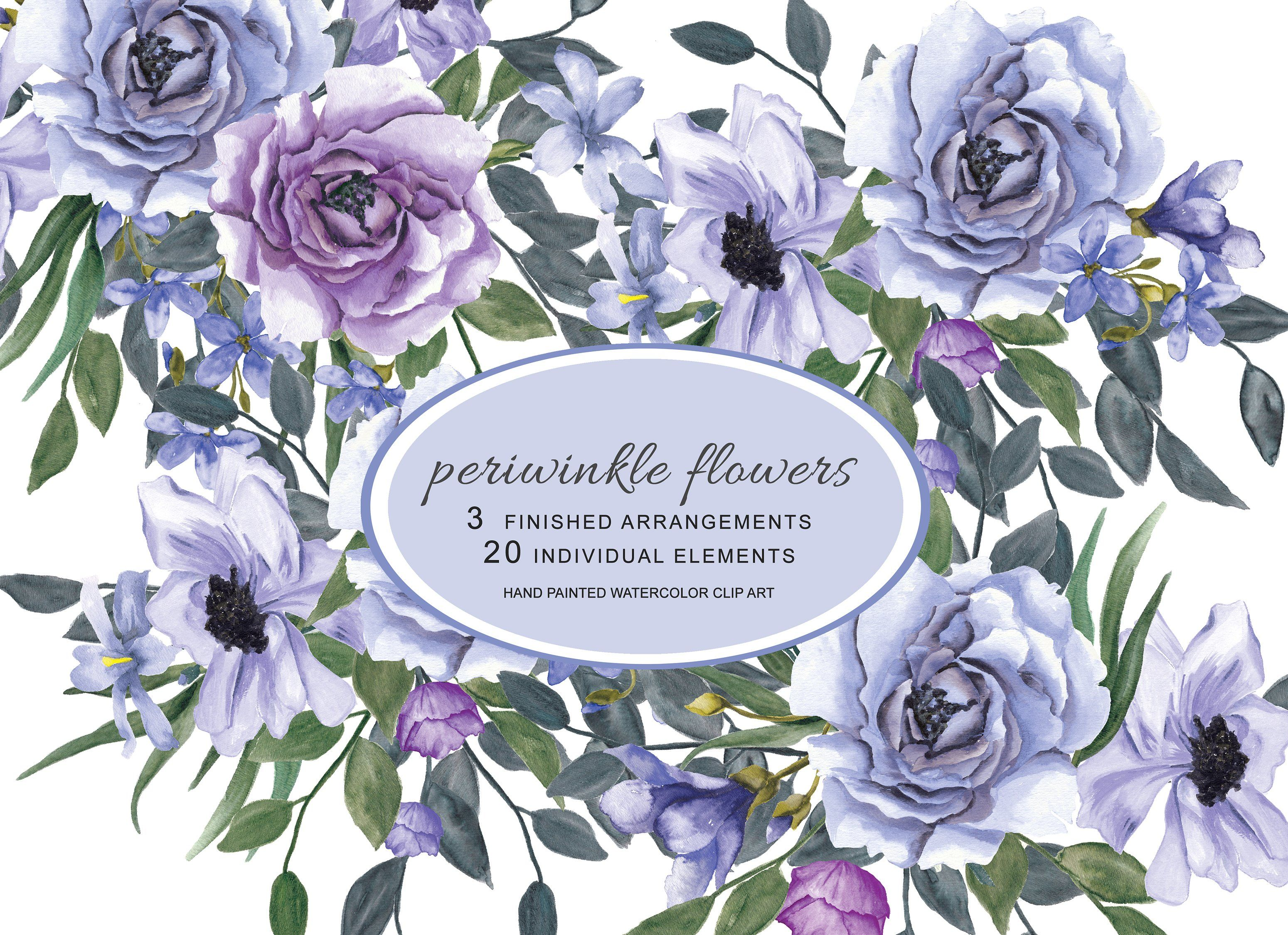 Watercolor Periwinkle Flowers Scrapbook Photos