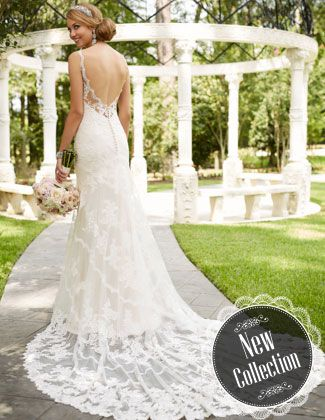 Stella York 6247 At The White Closet Bridal In Tampa, FL
