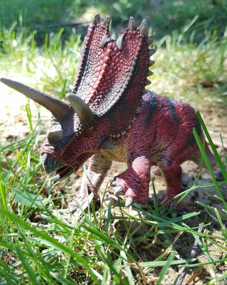 Schleich Pentaceratops 1
