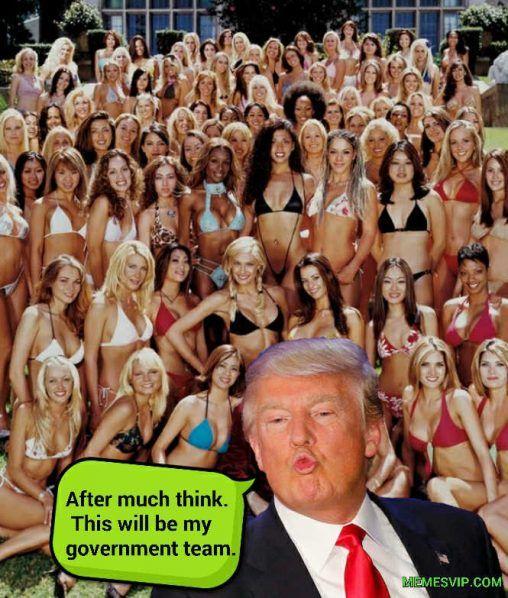 Trump Transition Team meme Imágenes graciosas y de risa #memes #memesvip #imagenesgraciosas #memesderisa #risa #lol #funny #gracioso #divertido #humor #amor #odio #leonesp #memestagram #memesespañol #funnymemes #dankmemes #trump #trumpmemes