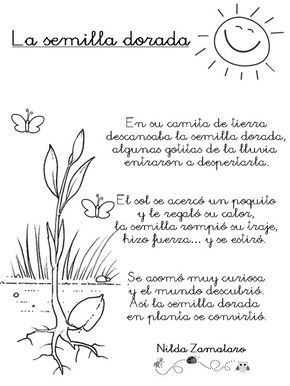 Poema Por El Dia Del Campesino Para Niños De Inicial Poema La Semilla Dorada De Nilda Zamataro Poemas Cortos Para