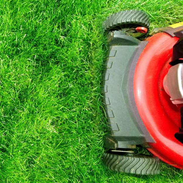 40+ What type of oil does a lawn mower take info